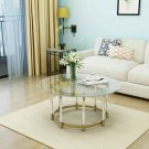 Verna Modern Glass Coffee Table with Gold Finished Stainless Steel Frame