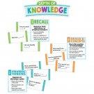 Depth Of Knowledge Mini Bb St