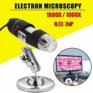 1000/1600X 8LED USB Zoom Digital Microscope Hand Held Biological Micro Endoscope