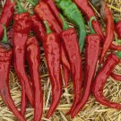 Cayenne Hot Chili Peppers Heirloom Non-GMO Pepper Garden Vegetable 30 Seeds