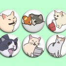 Cat memes ~ CHOOSE 1 ~ - 1.5 inch pinback button, clip or magnet