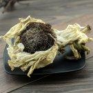 Xue Lian Hua 2pcs (About 30g) Snow Lotus Herb Herba Saussureae Involucratae