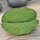 He Ye 500g Folium Nelumbinis Lotus Leaf Nelumbo Nucifera Gaertn.