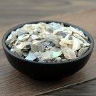 Shi Jue Ming 500g Abalone Shell Concha Haliotidis Haliotis Diversicolor Reeve
