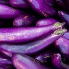 Long Purple Italian Eggplant Seeds NON-GMO 150 Seeds Ship From USA