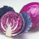 25 FRESH CABBAGE RED ACRE USA SEEDS  Ship From USA