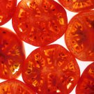 200 Red RUTGERS TOMATO Lycopersicon Globe Determinate 8 oz Fruit Vegetable SeedsShip From USA