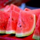 20 CAL SWEET SUPREME WATERMELON Red Citrullus Lanatus 30 lb Melon Fruit SeedsShip From USA