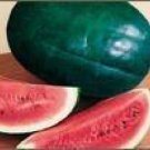 50 FLORIDA GIANT WATERMELON Cannon Ball Black Diamond Citrullus Fruit SeedsShip From USA