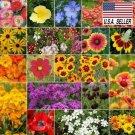 Guarantee DRY AREA WILDFLOWER  250 Seeds  MIX 19 Species of Wildflower Seeds