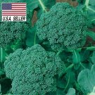 Guarantee 500 Seeds De Cicco Broccoli Italian Broccoli Seeds Heirloom NONGMO