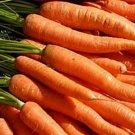 Guarantee Carrot Little Fingers 200 Seeds