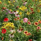 Guarantee Wildflower Midwest Mix Seeds 7g Seeds