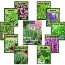 Guarantee 3175 Seeds Seeds Super Herb bulk 11 Varieties peppermint rosemary Lavender thyme