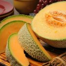 Guarantee 200 Organic Hearts of gold cantaloupe seeds   Non GMO Harvested in