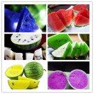 Eddy-Endah Store Watermelon seeds 50pcs fruit vegetable seeds Garden Home plantBlue Yellow Green Wat