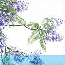 Eddy-Endah Store 20pcs Jacaranda mimosifolia Jacaranda Mimosa-leaved Jacaranda Blue Flamboyant