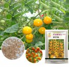 Eddy-Endah Store High Yield 'Yellow Pearl' Golden Bright Yellow Round Truss Cherry Tomato Seeds Orig