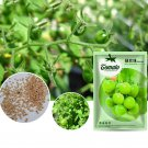 Eddy-Endah Store Green Pearl' Green Round Truss Cherry Tomato Seeds Original Pack 100 Seeds