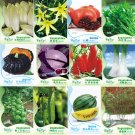 Eddy-Endah Store Original Pack Combos Garden Planting Seeds Chicory Day Lily Green Vegetables Black