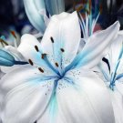 Eddy-Endah Store 50 Seeds Blue Heart Lily Plant Seeds Heirloom Lilium Lily Flower Fragrant Perennial