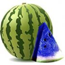Eddy-Endah Store super1798 10 Pcs New Variety Plant Blue Watermelon Seeds Vegetable Organic Gardenin