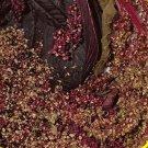 2000 Red Garnet Amaranth Herb Seeds
