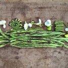 Thai Soldier Long Bean 25 Seeds