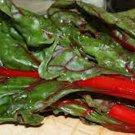 Rhubarb, Swiss Chard, HEIRLOOM, ORGANIC, NON-GMO, RHUBARB SWISS CHARD SEEDS