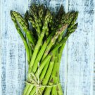 Asparagus Perennial HEIRLOOM Heavy Yields Most