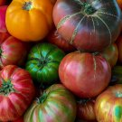 HEIRLOOM MIX Tomato Seeds Open Pollinated Bright Flavorful Mix