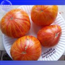 NEW !! 100 seeds King Big Tomato Seeds Red color with Golden Stripe