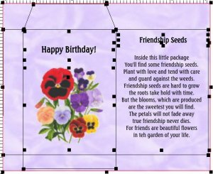 10 PERSONALIZED FRIENDSHIP SEED PACKETS FAVORS
