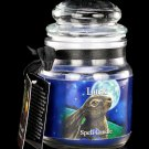 Luck Spell Candle | Wicca | Witchcraft | Lisa Parker | Spells | Magick