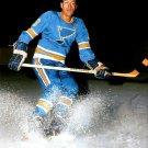 AL ARBOUR 8X10 PHOTO HOCKEY ST. LOUIS BLUES PICTURE NHL