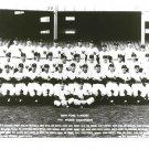 1951 NEW YORK YANKEES 8X10 TEAM PHOTO BASEBALL PICTURE NY WORLD CHAMPS MLB