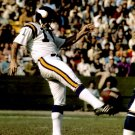 MIKE EISCHEID 8X10 PHOTO MINNESOTA VIKINGS PICTURE NFL FOOTBALL PUNTING