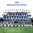 1988 INDIANAPOLIS COLTS  8X10 TEAM PHOTO FOOTBALL PICTURE NFL