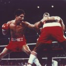 WILFREDO GOMEZ 8X10 PHOTO BOXING PICTURE COLOR ACTION
