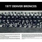 1977 DENVER BRONCOS 8X10 TEAM PHOTO PICTURE NFL FOOTBALL