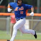 TIM TEBOW 8X10 PHOTO NEW YORK METS NY BASEBALL PICTURE MLB