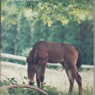 The Morgan Horse Magazine September-October 1980 Foal Issue
