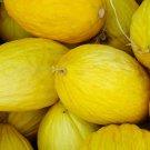 35 Seeds of Crenshaw Melon Seeds, Cranshaw, Heirloom, NON-GMO, Variety Sizes, FREE SHIP