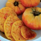 74 SGold Medal Tomato Seeds, 30 Seeds, NON-GMO, FREE SHIPeeds of