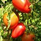 Pink Oxheart Tomato Seeds, 30 Seeds, NON-GMO, FREE SHIP