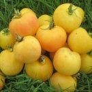 30 Seeds of Garden Peach Tomato Seeds, Cocona, NON-GMO, Heirloom, FREE SHIP