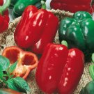 100 Seeds of California Wonder Bell Pepper, Variety Sizes, Heirloom, NON-GMO, FREE SHIP
