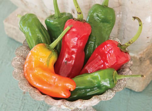 50 of Cubanelle Sweet Pepper Seeds, NON-GMO, Variety Sizes, FREE SHIP