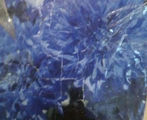 50 of Bachelor Button Blue Boy Flower Seeds