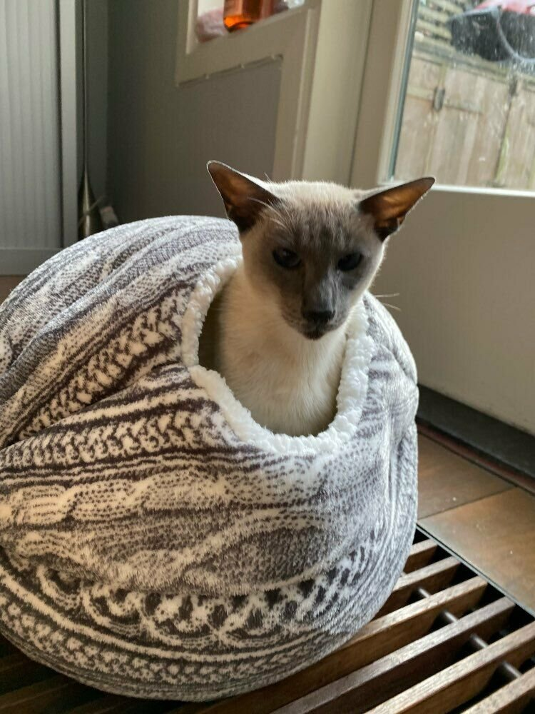 HOT SELLER 2 in 1 Pet Cat Bed Round Nest Warm Soft Plush Sleeping Cave Bag House Toy Ball